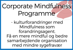 Corporate Mindfulness Programme